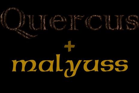 Quercus + Malyuss