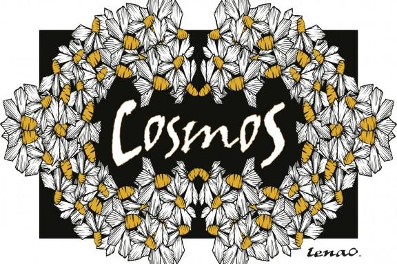 CosmoS  de LenaO.