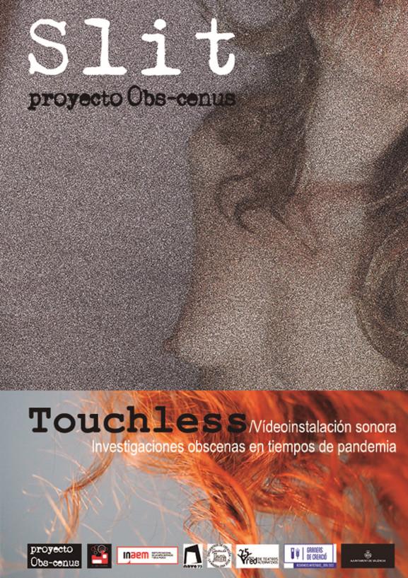 Slit / Proyecto Obs-cenus
